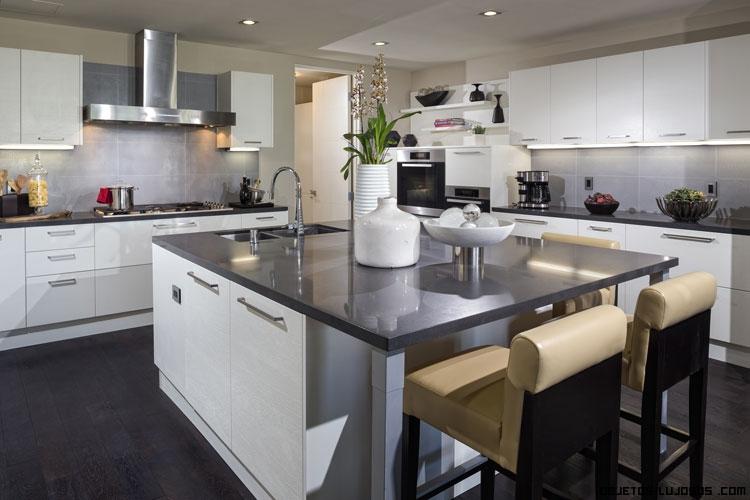 cocinas con electrodomésticos de lujo