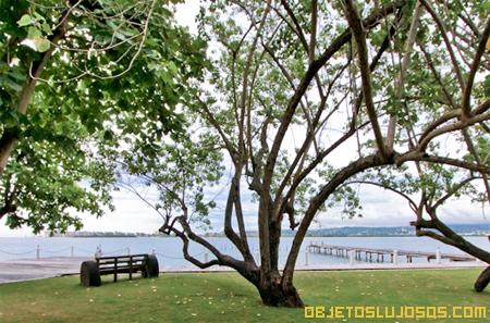 Fabulosos-paisajes-en-Jamaica
