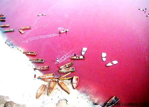 Vacaciones en lagos rosa