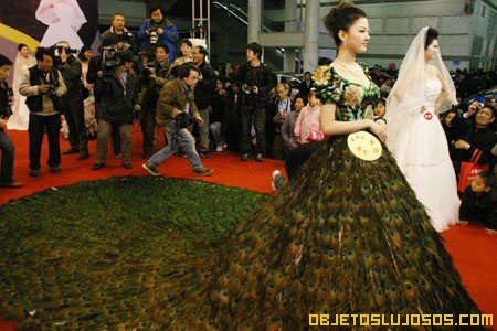 vestido de plumas de pavo real | objetos lujosos