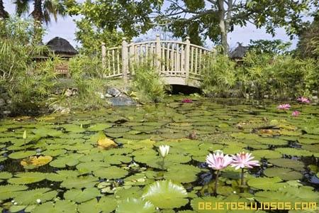 Villas-lujosas-con-jardines