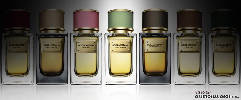 colección de perfumes dolce&gabbana