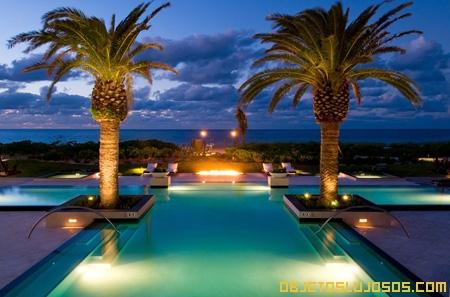 piscina-con-palmeras