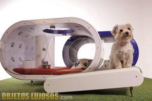 Una casa para perros de Samsung